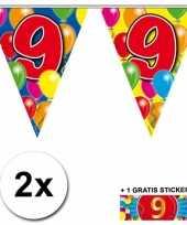 2 gekleurde vlaggenlijnen 9 jaar met sticker trend