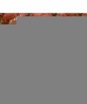 20 oranje knutsel pompons 20 mm trend