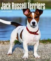 2018 kalender jack russel honden trend