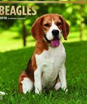 2018 kalender met beagle hondjes trend