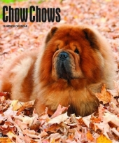 2018 kalender met chow chows trend