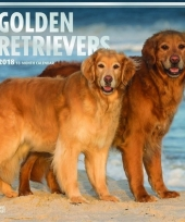 2018 kalender met golden retrievers trend