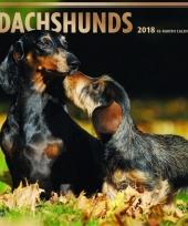 2018 kalender met teckels trend