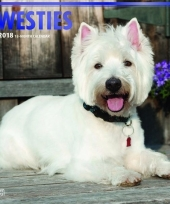 2018 kalender met west highland white terrier trend