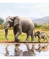 20x olifanten dieren thema servetten 33 x 33 cm trend