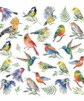 20x vogels dieren voorjaars servetten 33 x 33 cm trend