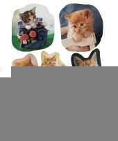 21x katten poezen dieren stickers trend