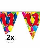 2x gekleurde vlaggenlijn 11 jaar trend