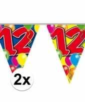 2x gekleurde vlaggenlijn 12 jaar 10 meter trend