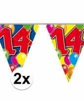 2x gekleurde vlaggenlijn 14 jaar 10 meter trend