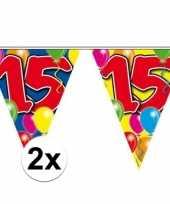 2x gekleurde vlaggenlijn 15 jaar 10 meter trend