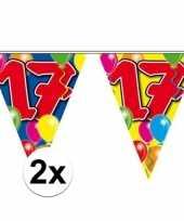 2x gekleurde vlaggenlijn 17 jaar 10 meter trend