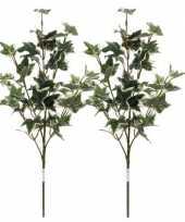 2x groen geelbonte hedera klimop kunsttakken kunstplanten 50 cm trend