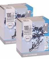 2x kerstverlichting afstandsbediening helder buiten 100 lampjes trend