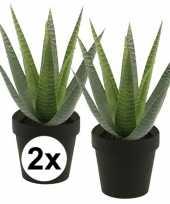 2x kunstplant aloe vera groen in zwarte pot 23 cm trend