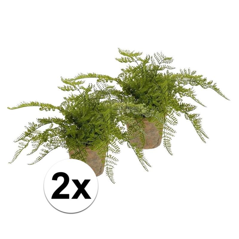 2x kunstplant herfst varen groen in pot trend