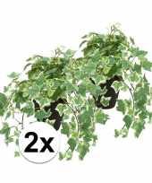 2x kunstplant klimop groen wit in zwarte pot 30 cm trend