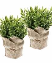 2x kunstplanten muizendoorn kruiden groen in jute pot 20 cm trend