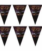 2x vlaggenlijnen slingers halloween party 250 cm trend