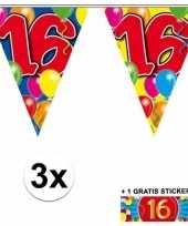 3 gekleurde slingers 16 jaar met sticker trend
