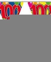 3 gekleurde vlaggenlijnen 100 jaar met sticker trend