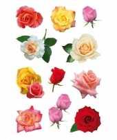 33x gekleurde rozen bloemen stickers trend