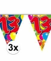 3x gekleurde vlaggenlijn 13 jaar 10 meter trend