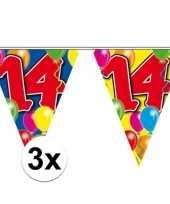 3x gekleurde vlaggenlijn 14 jaar 10 meter trend