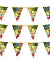 3x hawaii thema vlaggenlijnen 6 meter trend