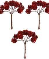 3x kerststukje instekers bosje van 12 rode dennenappels op draad trend