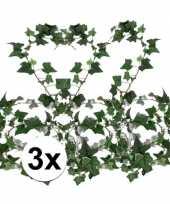 3x klimop slinger hedera helix 180 cm trend