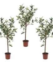 3x kunstplant groene olijfboom 65 cm in betonlook pot trend