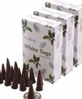 3x pakje stamford wierook kegeltjes witte salie geur trend