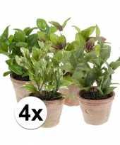 4 kruiden kunstplanten salie laurier basilicum munt in potjes trend