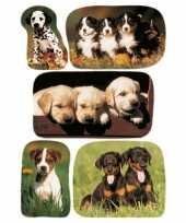 45x honden puppy dieren stickers trend