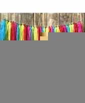 4x kwast tassel slinger regenboog 5 meter trend
