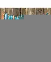 4x kwast tassel slingers mint groen 5 meter trend
