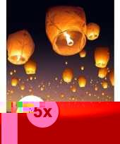 5 stuks voordeel wensballonnen 50 x 100 cm trend
