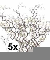 5x bruine kronkelhazelaar kunstbloemen tak 66 cm trend