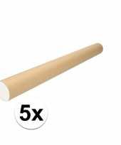 5x kartonnen poster kokers a1 trend