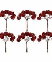 6x kerststukje instekers bosje van 12 rode dennenappels op draad trend