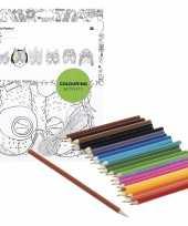6x knutsel papieren maskers om in te kleuren incl potloden trend