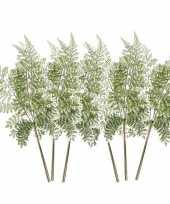 6x kunstplanten bosvaren takken 58 cm groen trend