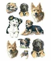 81x honden puppy dieren stickers trend