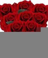 8x rode rozen deluxe kunstbloemen 31 cm trend