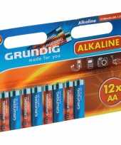 Alkaline batterijen aa grundig 12 stuks trend