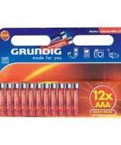 Alkaline batterijen aaa grundig 12 stuks trend