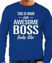 Awesome boss baas cadeau sweater blauw heren trend
