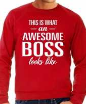 Awesome boss baas cadeau sweater rood heren trend