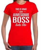 Awesome boss tekst t-shirt rood dames trend